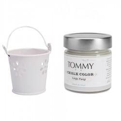 Tommy CHALK COLOR Grigio...